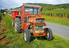 Tractor/farm/vinyard: Massey Ferguson 152 four-wheel farm tractor pulls trailer for gathering grapes at chardonnay grape vinyard harvest. The Solutre Escarpment is in the background above the tractor. Solutre, near Macon, France September 2006